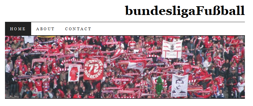 In The Blog - Bundesliga Fußball