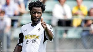Report: Stoke City launch late bid to sign Wilfried Bony from Manchester City